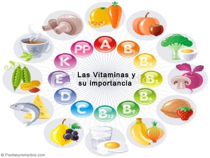 Vitaminas , fuentes , usos , importancia para la salud