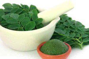 Tratar la diabetes y el colesterol alto con hojas de moringa