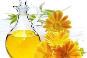 Beneficios para la salud del aceite de caléndula y usos