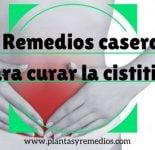 10 Remedios caseros para curar la cistitis