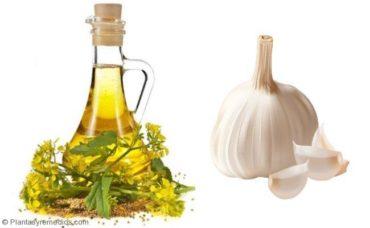 Cómo utilizar ajo y aceite de mostaza para el asma
