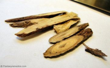 Quitar el dolor de garganta con raíz de regaliz