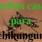 Remedios caseros para la chikungunya