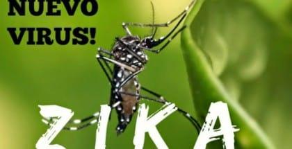 Virus Zika , remedios,sintomas