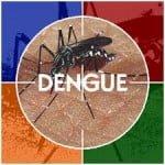 Remedios caseros para el dengue