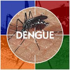 dengue-remedios-caseros