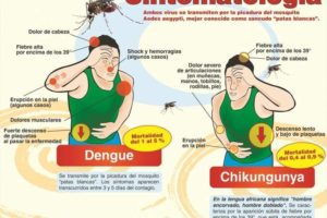 sintomas-diferencia-dengue-chikungunya