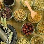 Beneficios de las plantas para la salud