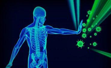Aloe vera para subir la inmunidad
