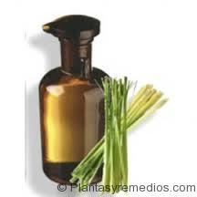 el queso oaxaca tiene acido urico para bajar acido urico fruta que cura el acido urico