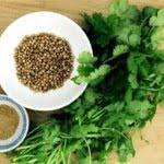 Propiedades medicinales del cilantro