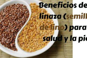 Beneficios de la linaza (semillas de lino) para la salud y la piel