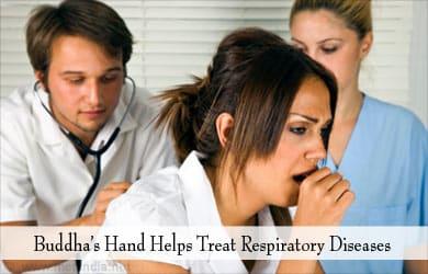 Mano de Buda Se usa para tratar el asma