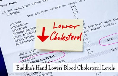 Mano de Buda ayuda a bajar el colesterol