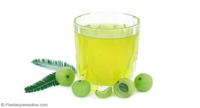 Remedio con grosella espinosa india para el colesterol alto