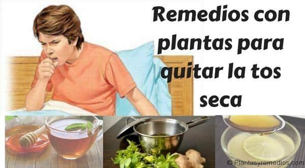 Remedios con plantas para quitar la tos seca