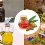 5 aceites a base de plantas para combatir la caída del cabello