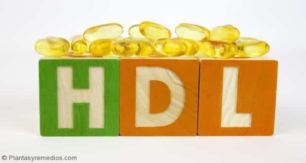 6 alimentos para aumentar los niveles de colesterol bueno (HDL)