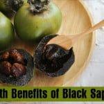 Beneficios para la salud del zapote negro