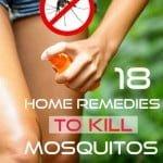 18 remedios caseros para matar o repeler los mosquitos
