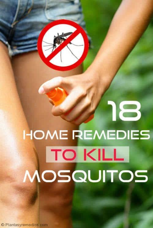 Remedios caseros para deshacerse de los mosquitos