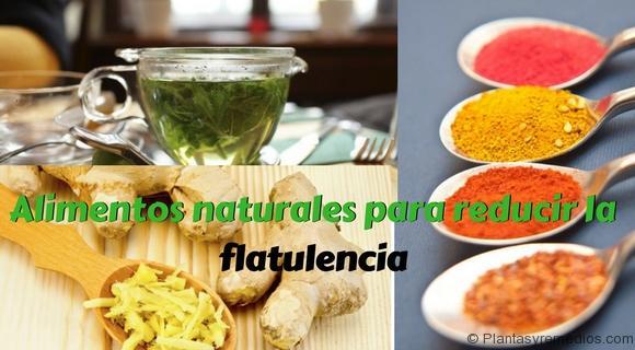 Alimentos naturales para reducir la flatulencia plantas medicinales remedios caseros - Alimentos adelgazantes naturales ...