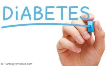 Usar albahaca para tratar la diabetes