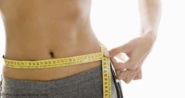 Cómo utilizar Triphala para bajar de peso