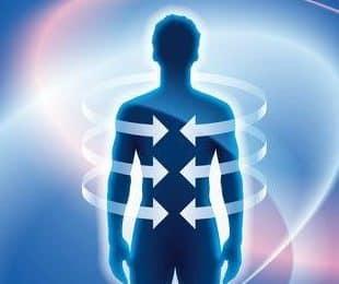 albahaca morada aumenta los niveles de energia en el cuerpo