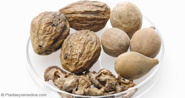 7 beneficios de la Triphala para la salud