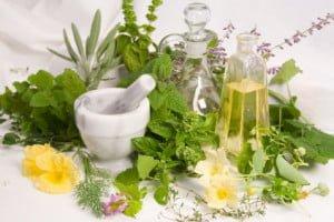 Hierbas -plantas-medicinales-cancer