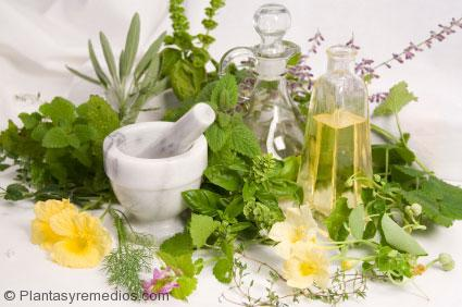 Las hierbas y antioxidantes que combaten el cáncer
