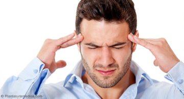 Usar albahaca para el dolor de cabeza