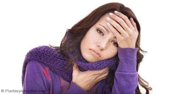 Remedios caseros con jengibre para la tos y el resfriado