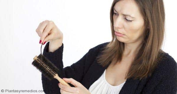 Dieta para prevenir la caída del cabello