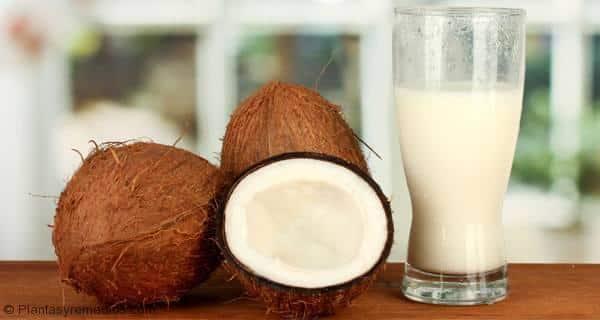 Leche de coco y sus beneficios para la salud