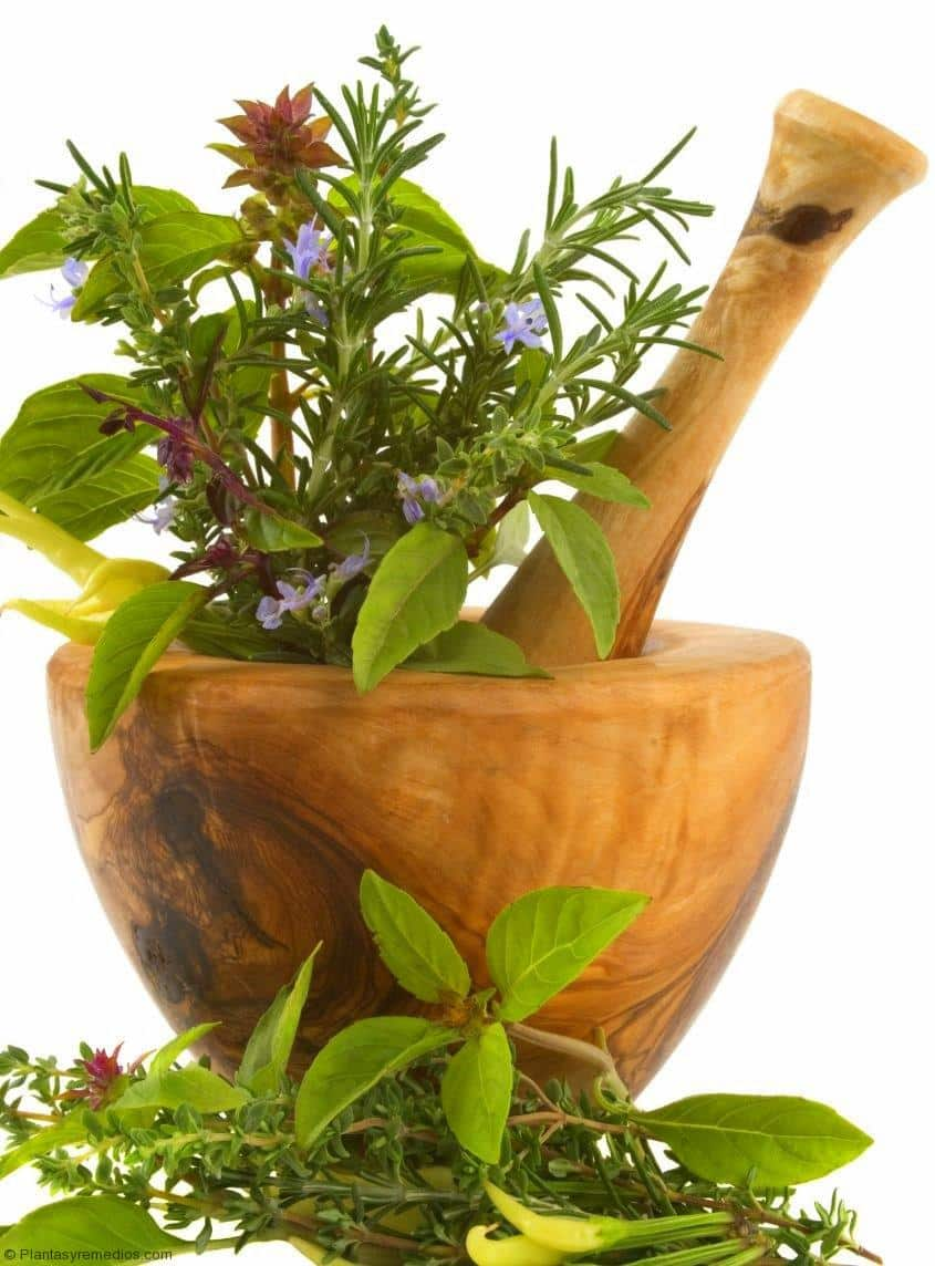 Natural Remedies For Pre Ejaculation
