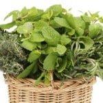Remedios a base de hierbas para las enfermedades de encías