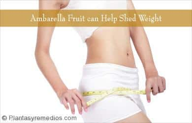 Ambarella fruta ayuda en la pérdida de peso