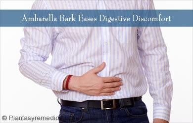 Ambarella ayuda a tratar los problemas digestivos