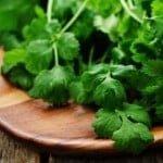 5 maneras de incluir cilantro en su dieta