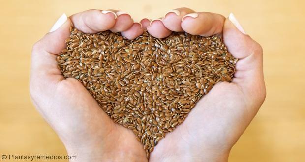 Semillas de linaza para bajar el colesterol