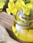 El aceite de canola y sus beneficios para la salud
