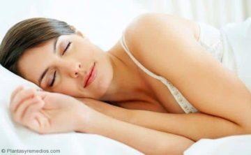 Toronjil para el sueño , insomnio