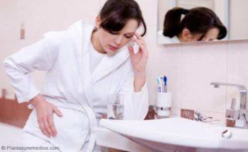 Té de toronjil para prevenir las enfermedades durante el embarazo