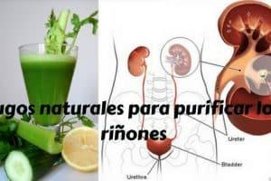 Jugos naturales para purificar los riñones