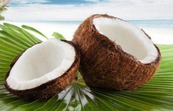 Consumir coco para curar la gastritis