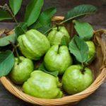 ¿ Para que sirven las hojas de guayaba ?