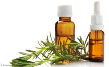 Eliminar el mal olor en el pelo y cuero cabelludo con aceite de romero