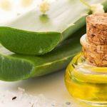 Aceite de hierbas : Beneficios del aceite de aloe vera y usos